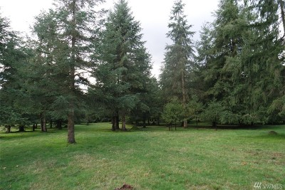 Residential Lots & Land For Sale: 8721 183rd Ave SW
