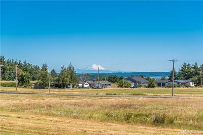 Oak Harbor Single Family Home For Sale: 798 Scenic Estates Lane