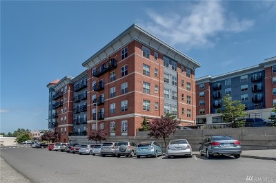 Condo/Townhouse Sold: 910 Harris Ave #503