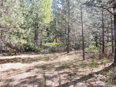 Chelan, Chelan Falls, Entiat, Manson, Brewster, Bridgeport, Orondo Residential Lots & Land For Sale: Tyee Dr