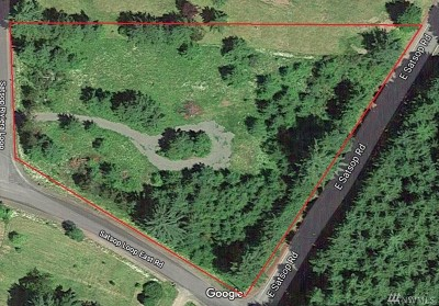 Satsop Residential Lots & Land For Sale: 247 Satsop Riviera Lp