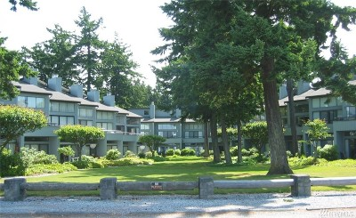 Blaine Condo/Townhouse Contingent: 7806 Birch Bay Dr #709