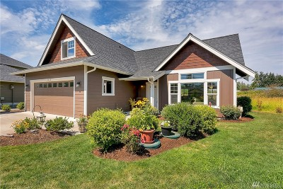 Blaine Single Family Home For Sale: 4606 Elmwood Dr