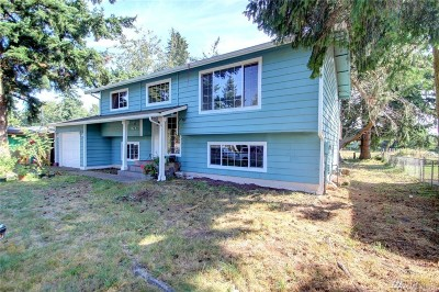 Lynden Single Family Home For Sale: 247 Pollman Cir