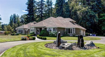 Custer Single Family Home For Sale: 2238 Birch Bay Lynden Rd