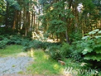 Residential Lots & Land For Sale: 15 Gray Birch Lane