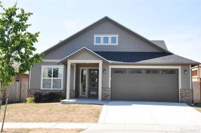 Bellingham Single Family Home For Sale: 4071 Kingston St