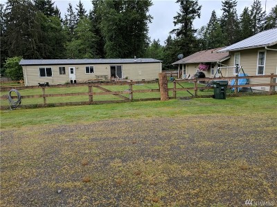 Graham Single Family Home For Sale: 13823 250th St E