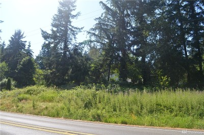 Residential Lots & Land For Sale: 403 Front St SE