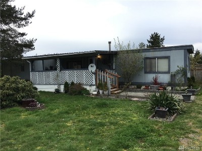 Rochester Single Family Home For Sale: 17943 Robinson Lane SW