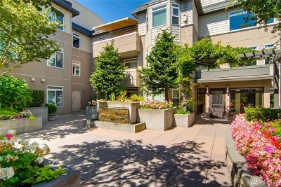 Kirkland Condo/Townhouse For Sale: 102 State St S #W307