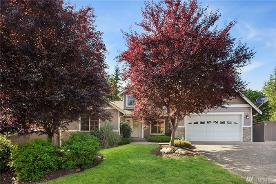 Arlington Single Family Home Contingent: 919 274 Place NW