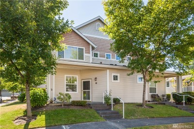 Pierce County Condo/Townhouse For Sale: 1115 62nd St SE #B