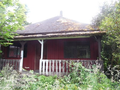 Orting Single Family Home For Sale: 13811 South Prairie Carbon River Rd
