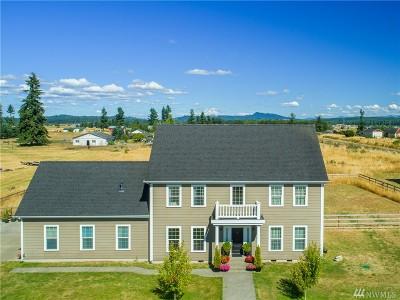 Rochester WA Single Family Home For Sale: $519,000