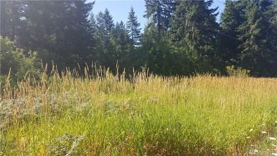 Yelm Residential Lots & Land For Sale: Hwy 507