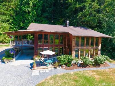 Deming Single Family Home For Sale: 4700 Mt Baker Highway