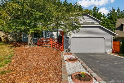 Bothell Single Family Home For Sale: 419 164th Place SE