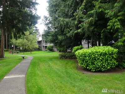 King County Condo/Townhouse For Sale: 33005 18th Place S #G203