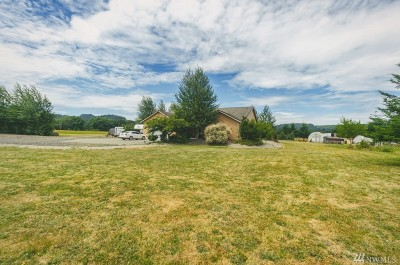 Chehalis Single Family Home For Sale: 393 Ceres Hill Rd