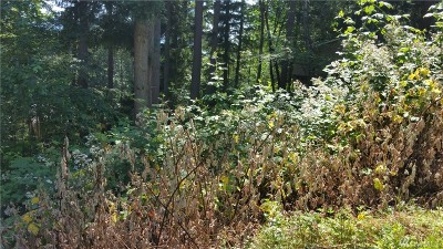 King County Residential Lots & Land For Sale: 210 NE 15th St