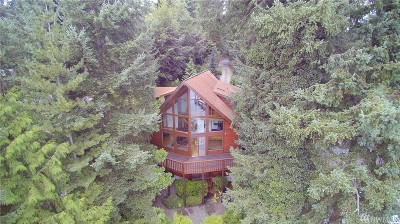 Gig Harbor Single Family Home For Sale: 4810 17th St Ct NW