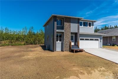 Island County Single Family Home For Sale: 369 Hocker St
