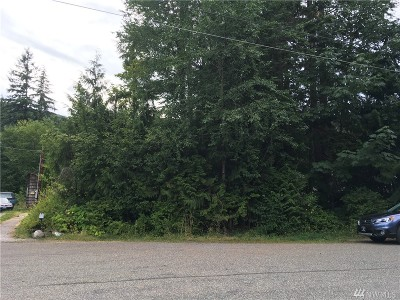 Maple Falls Residential Lots & Land For Sale: 8421 Ash Lane
