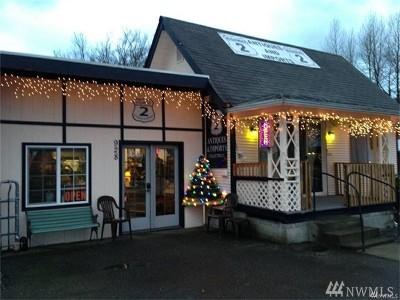 Sultan Single Family Home For Sale: 928 Stevens Ave