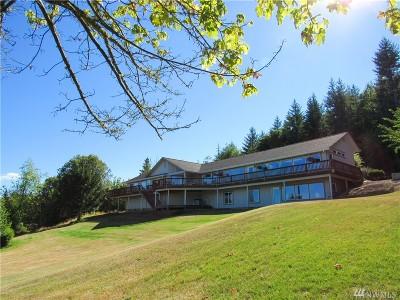 Centralia Single Family Home For Sale: 143 June Lane
