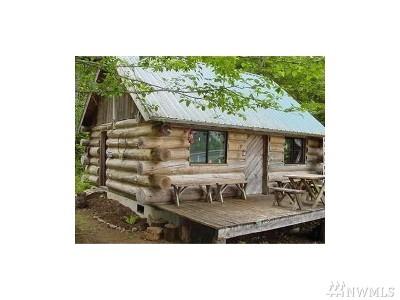 Mason County Single Family Home For Sale: 360 N Cushman Ridge Rd