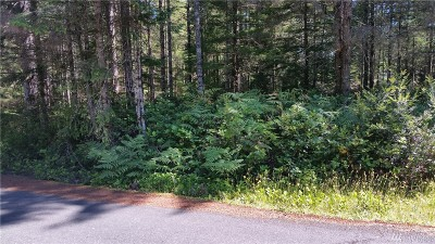 Mason County Residential Lots & Land For Sale: 230 E Susan Lane