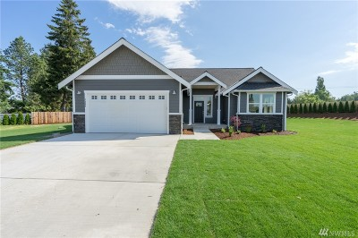 Ferndale Single Family Home For Sale: 7364 Wiser Heights Rd