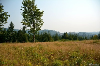 Residential Lots & Land For Sale: 4732 Gold Ridge Lane SW