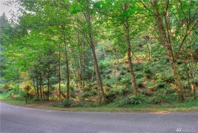 Residential Lots & Land For Sale: 160 Sudden Valley Dr