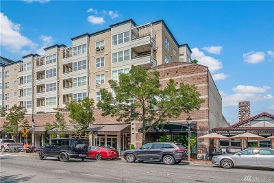 Bellevue Condo/Townhouse For Sale: 10042 Main St #210