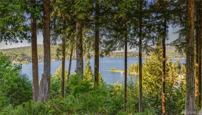 Bellingham WA Residential Lots & Land For Sale: $325,000