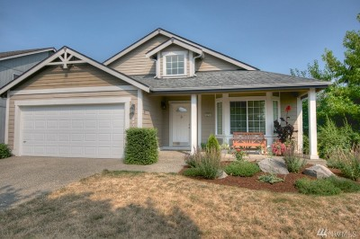 Chehalis Single Family Home For Sale: 197 Wind River Dr