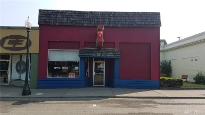 Shelton Commercial For Sale: 423 Railroad Ave