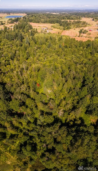 Whatcom County Residential Lots & Land For Sale: 3975 Yes Rd