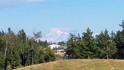Whatcom County Residential Lots & Land For Sale: Olson Rd