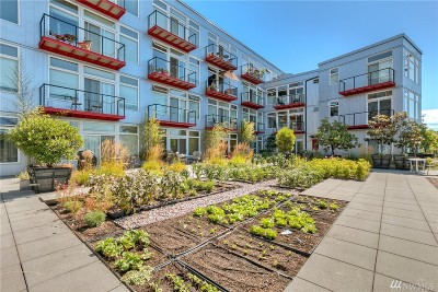 Seattle Condo/Townhouse For Sale: 2960 Eastlake Ave E #212