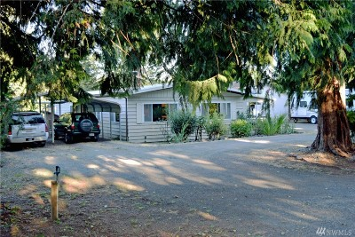 Elma Single Family Home For Sale: 166 E Satsop Rd