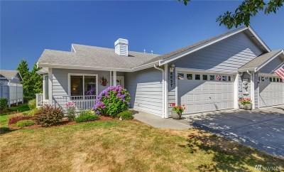 Bellingham Condo/Townhouse For Sale: 4627 Boardwalk Dr