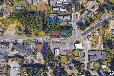 Bonney Lake Residential Lots & Land For Sale: 8609 Locust Ave E