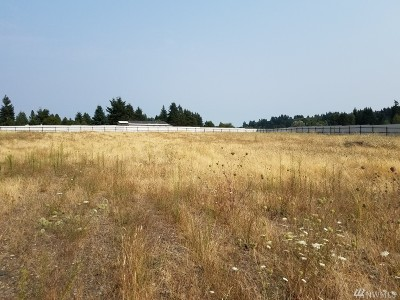 Residential Lots & Land For Sale: 10017 180th Wy SW