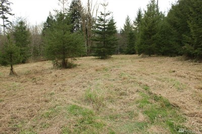 Residential Lots & Land For Sale: 1101 Swanson