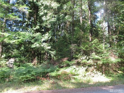 Whatcom County Residential Lots & Land For Sale: 7497 Olsen Dr