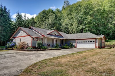 Montesano Single Family Home For Sale: 347 Middle Satsop Rd