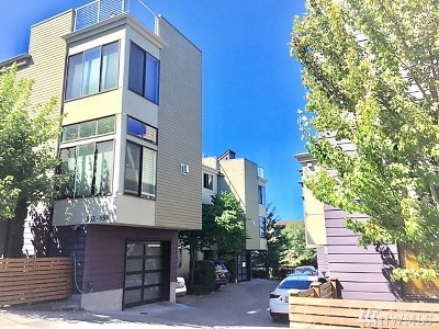 Single Family Home For Sale: 556 McGraw St